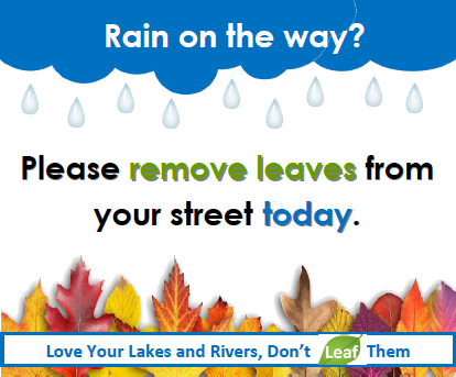 Leaf-free Streets before the Storm Can Lead to Cleaner Waters